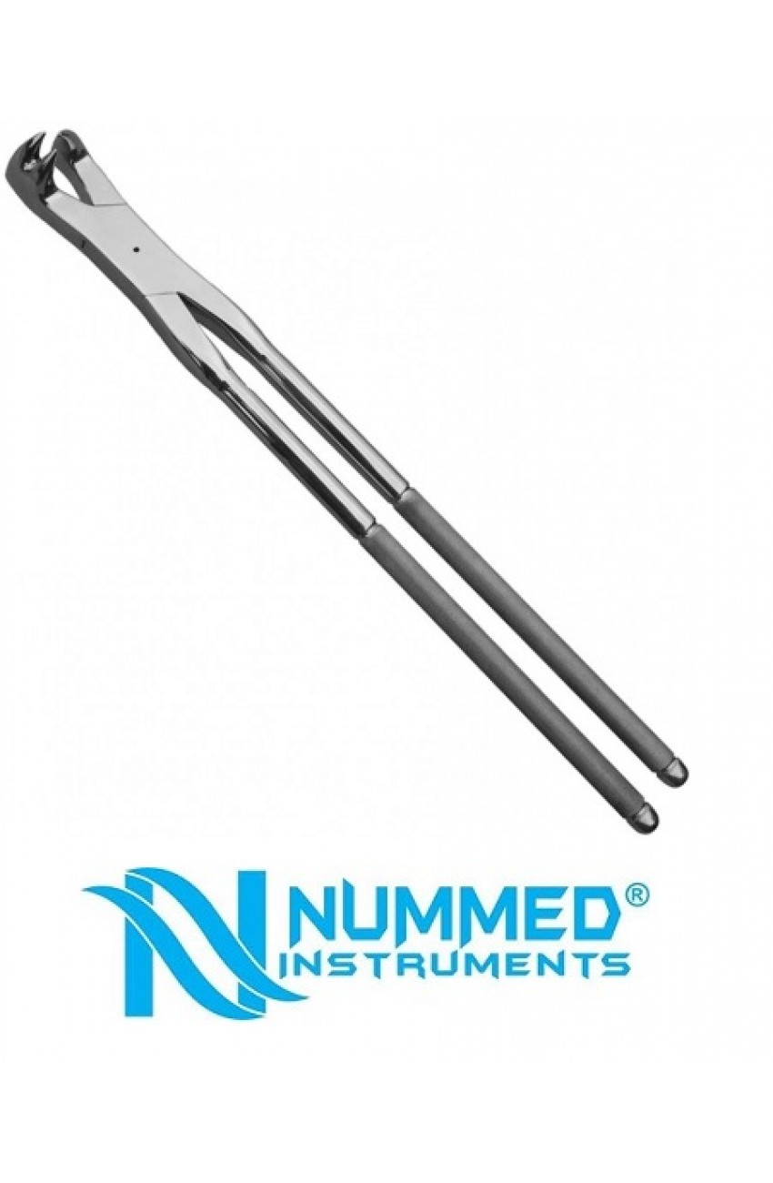 19 Inch Three Prong Forceps ,RightMolar Forceps